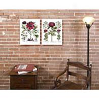 Basilius Besler's Peony Set Of 2 Canvas Prints