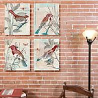Bird Watching Set Of 4 11in X 14in Canvas Prints