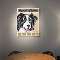 Border Collie 16kn X 20in Canvas Print