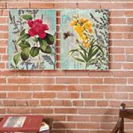 Classic Garden Set Of Two 16x2O Canvas Impression