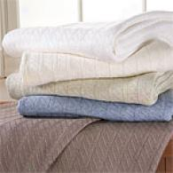 Closeout Charisma Egyptian Cotton Blanket