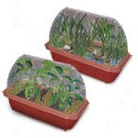 Dunecraft Tropial Palm & Banana Farm Greenhouses