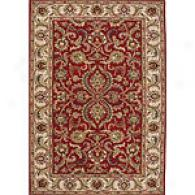 Edi Red & Dark Ivory 5 X 8 Hand Tufted Wool Rug