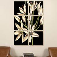 Graphic Lilies Set Of 6 16in X 16in Canvas Prints