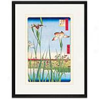 Hiroshige, Iris Garden At Horikiri Framed Print