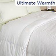 Max 600tc Egyptian White Goose Down Comforter