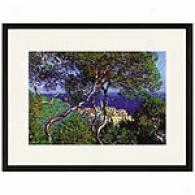 Monet Bordighera 18 X 24 Framed Print