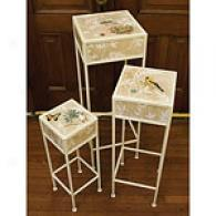 Natures Wonder Set Of 3  Nested Pedestals