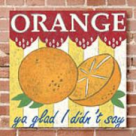 Orange 16x16 Canvas Print