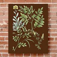 Organized Greenery I 16in X 20in Canvas Print