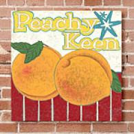 Peachy Keen 16in X 16in Canvas Printt