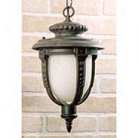 Quoizel Oxford Medium Outdoor Hanging Lantern