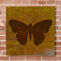 Qwerties Butterfly 16i X 16in Canvas Print