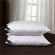 Set Of 2 440tc Silk Rich Down Aletrnative Pillows