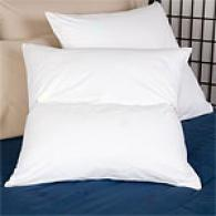 Set Of 2 Comfort Reader Euro Square Pullow & Cover