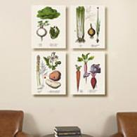 Vegetables Set Of 4 16 X 16 Canvas Print