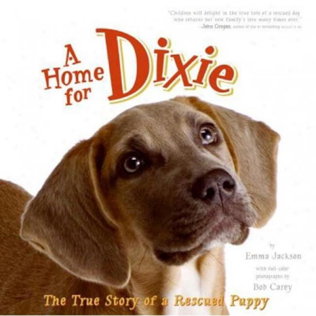 A Home For Dixie: The Faithful Story Of A Rescued Puppy