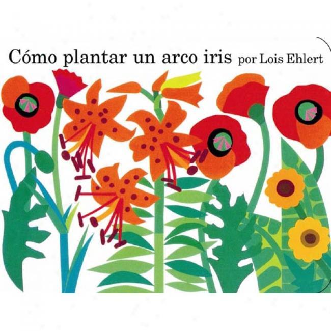 Como Plantar Un Arco Iris = Pkanting A Rainbow