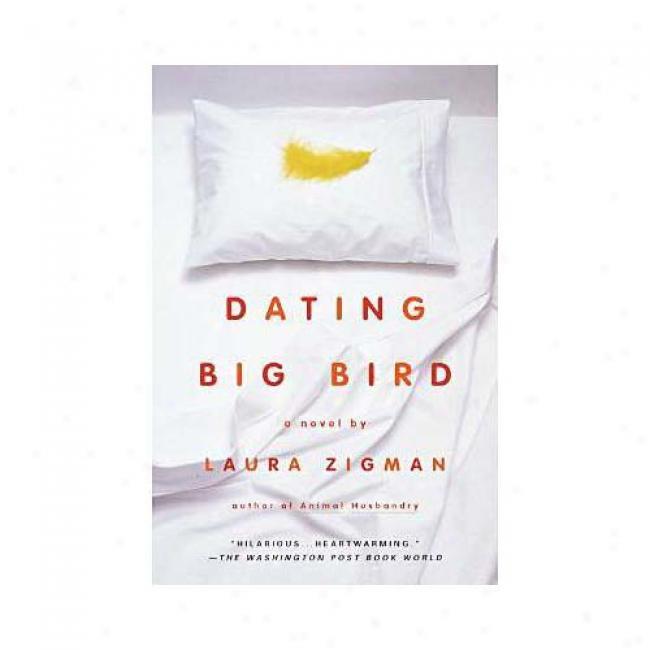 Dating Big Bird By Laura Zigman, Isbn 0385333412