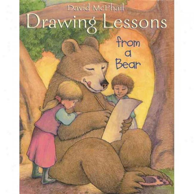 Drawing Lessons From A Bear By David M. Mcphail, Isbn 0316563455