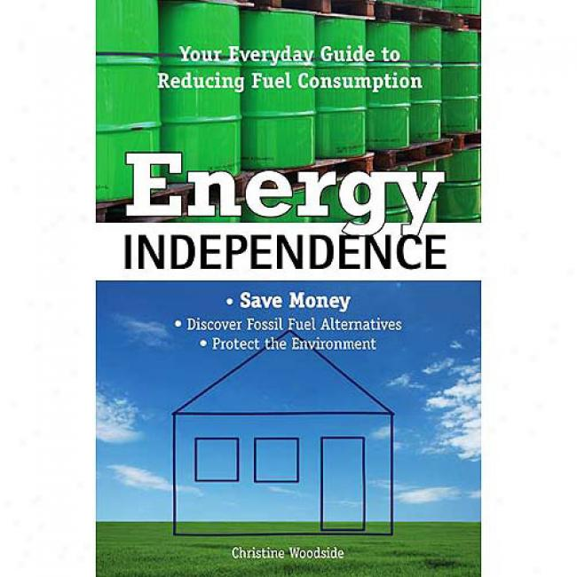 Energy Competence: oYur Everyday Guide To Reducing Fuel Extinction
