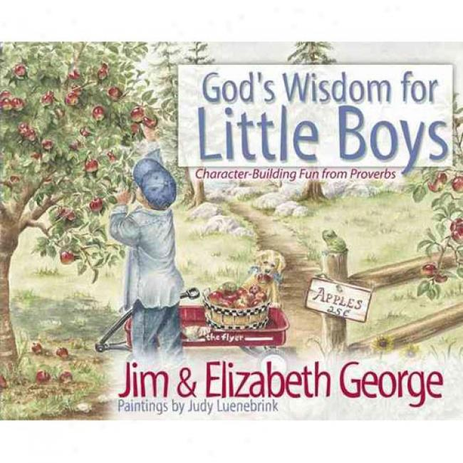 God's Wsidom For Little Boys: Character Building Fun From Proverbs By Jim George, Isbn 0736908242