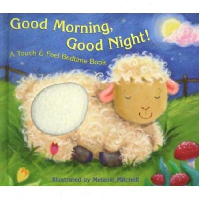 Good Morning, Good Night!: A Touch & Feel Bedtime Book