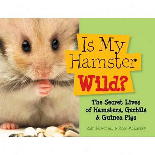 Is My Hamster Wild?: The Secret Lives Of Hamsters, Gerbils & Guinea Pigs