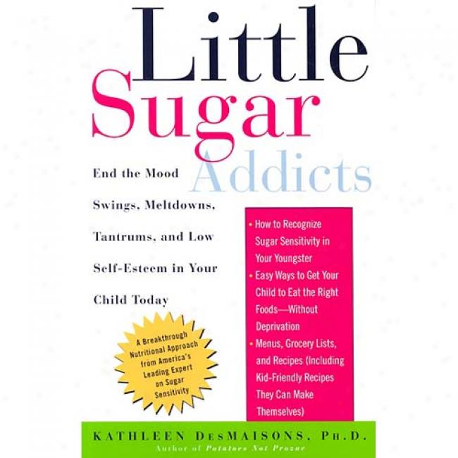 Littl eSugar Addicts: End The Mood Swings, Meltdowns, Tantrums, And Low Self-esteem In Your Child Today