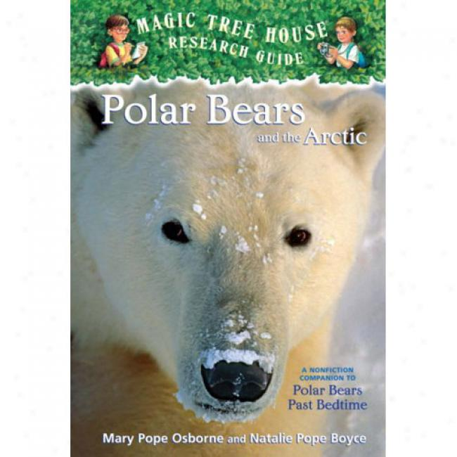 Polar Bears And The Northern: A Nonfiction Companion To Polar Bears Past Bedtime