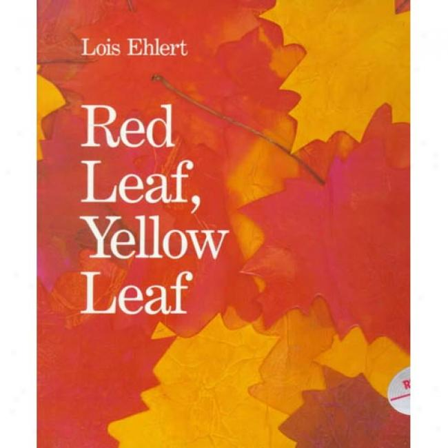 Red Leaf, Yellow Leaf By Lois Ehlert, Isbn 0152661972
