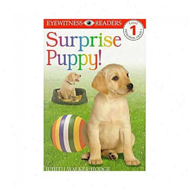 Surprise Puppy By Judith Hodge, Isbn 0789436248