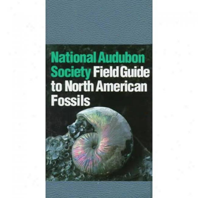 The Audubon Society Field Guide To North American Fossils By Ida Thompson, Isbn 0394524128