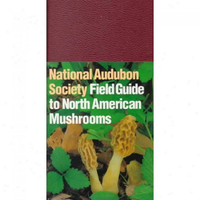 The Audubon Society Province Guide To North Amrican Mushrooms By Gary H. Lincoff, Isbn 0394519922