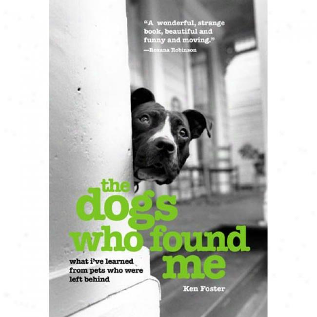 The Dogs Who Found Me: What I've Learned From Petx Who Were Left Behind