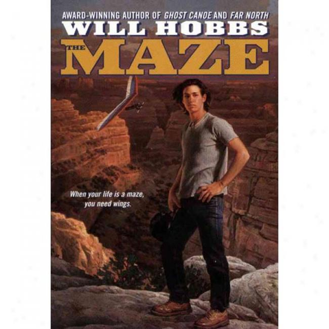 The Maze By Will Hobbs, Isbn 038072913x