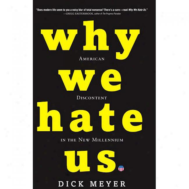 Why We Hate Us: Americn Discontent In The New Millennium