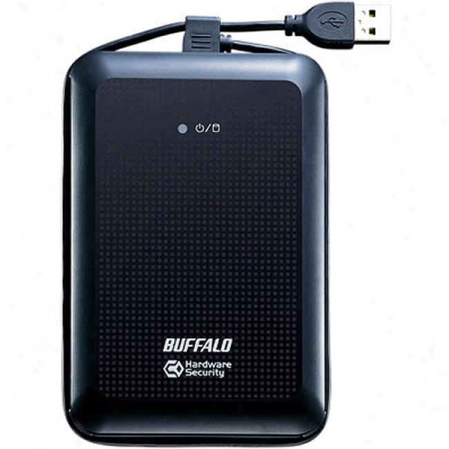 Buffalo Technology 160gb Ministation Datavault Usb Hard Hurl