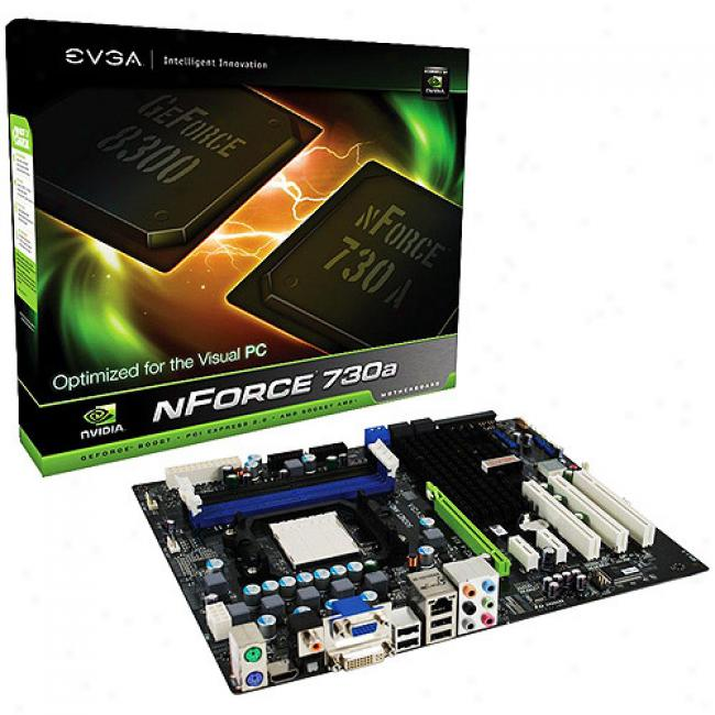 Evga Nforce 730a Mb 8200 Agp VideoC ards