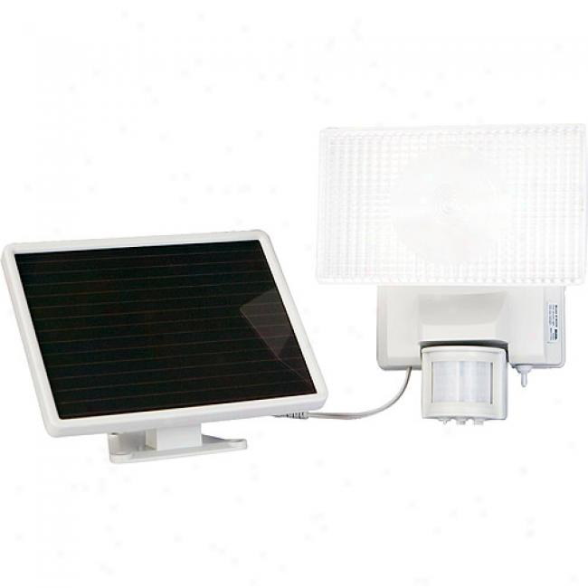 Maxsa Solor Powered 30-watt Halogen Security Floodlight