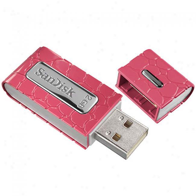 Sandisk 2gb Cruzer Gator Usb 2.0 Flash Drive, Pino