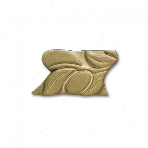 Adex Usa Natural Citrus Lisetllo Green 2 Tile & Stone