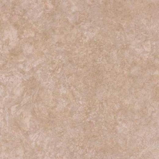 Alfa Ceramica Saturnia 12 X 12 Antique White Tile & Stone