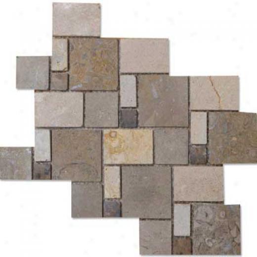 Alfagres Tumbled Marble Puzzle Stone 8 1/8 X 10 5/8 Perlatto Cafe Pinto Marron Emperador Tile & Stone