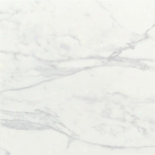 American Olean Catarina 12 X 12 Sardinian Sand Tile & Stone
