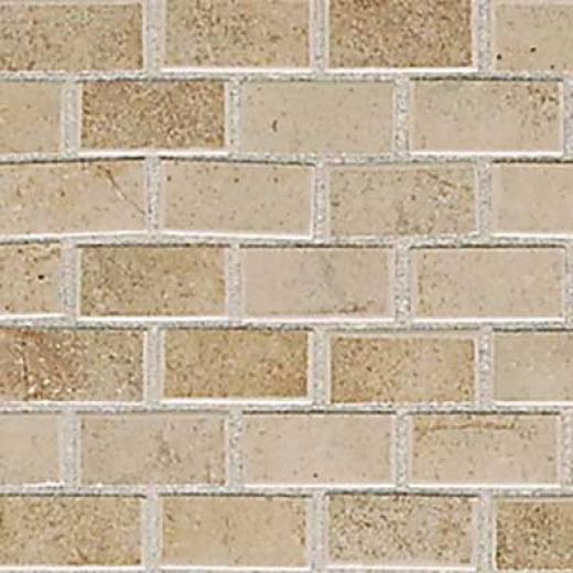American Olean Costa Rei 12 X 12 Sabbia Dorato Tile & Stone