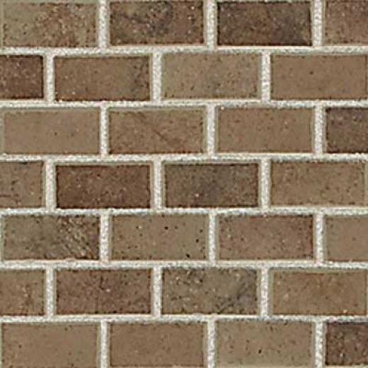 American Olean Costa Reei Mosaic 1 X 2 Terra Marrone Tile & Stone