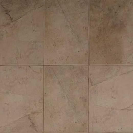 American Olean Costa Rei 10 X 14 Terra Marrone Tile & Stone