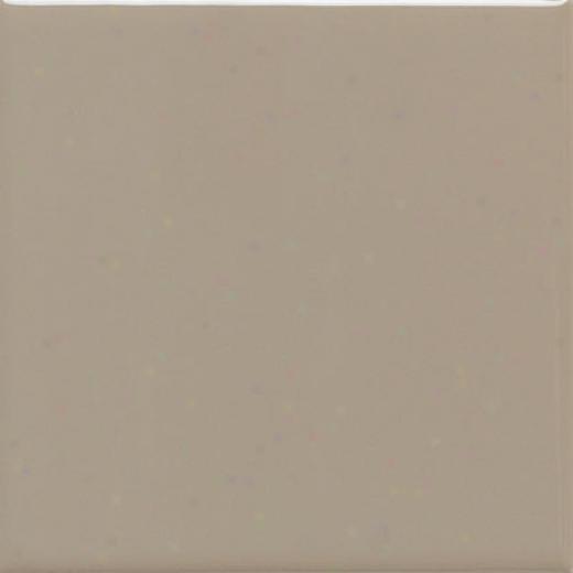American Olean Matte 4 X 4 Matte Mudhroom Tile & Stone