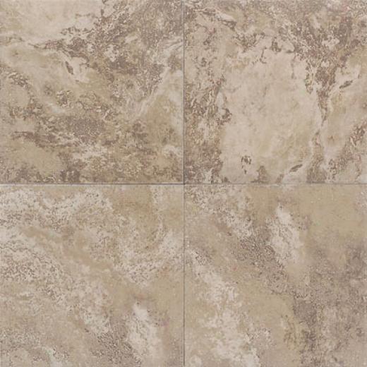 American Olean Saisons 20 X 20 Brun Tile & Stone